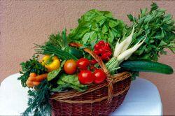 Individueller Ernährungsplan